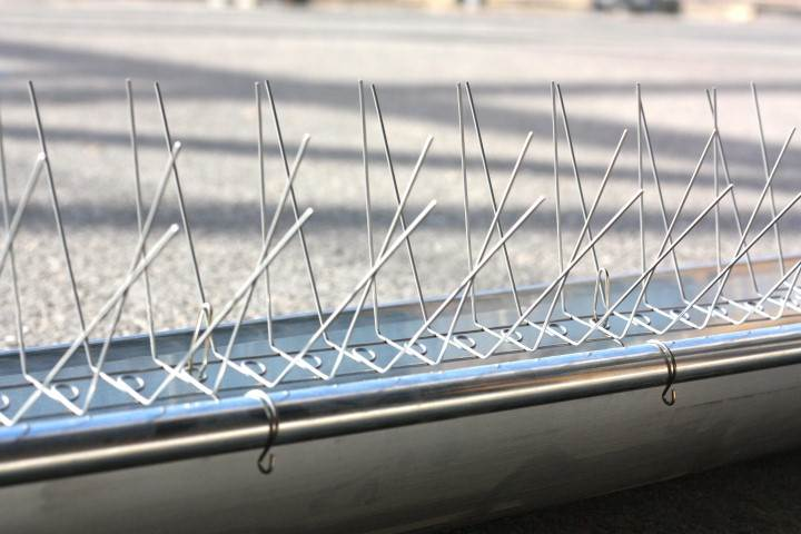 Obturateur De Tuile Anti Nuisible 34 Couvreur Toiture Artisan Renovation Entretien Expertise Montpellier